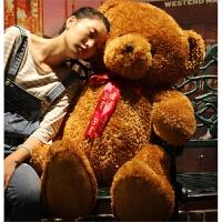生日礼物送女生害羞熊毛绒玩具熊大号抱抱熊玩偶公仔