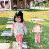 童装女童套装宝宝运动两件套儿童套装