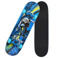 四轮滑板初学者双翘青少年儿童男女代步滑板车公路长板