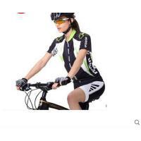 潮流气质立领透气舒适套装男女山地车公路车自行车骑行服短袖骑行服