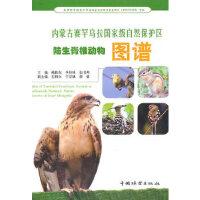 正版-H-内蒙古赛罕乌拉自然保护区陆生脊椎动物图谱 鲍伟东 9787503858727 中国林业出版社