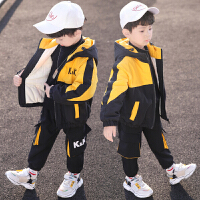 童装男童秋冬装套装儿童洋气中小童冬季两件套潮