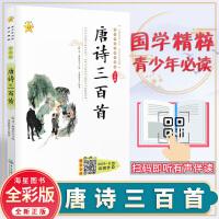 唐诗三百首 青少年推荐阅读国学读本 彩绘版