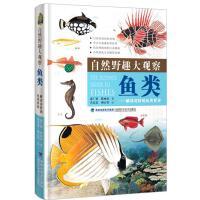 自然野趣大观察・鱼类