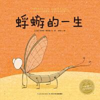 海豚绘本花园:蜉蝣的一生(平)(新版)