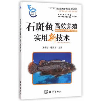 石斑鱼高效养殖实用新技术 本书可供广大石斑鱼养殖从业者指导生产使用, 也可供水产养殖专业的师生、有关科技人员及管理人 员参阅。