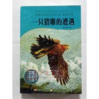 正版 一只猎雕的遭遇 浙江少儿出版社