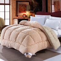 伊丝洁家纺冬季新款 加厚保暖羊羔绒被芯单双人柔羽丝绒被子