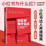 小红书为什么红:小红书爆红背后的秘密及内容运营策略 达人养成指南 内容运营