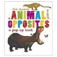 Animal Opposites动物正反面 英文儿童立体童书 启蒙早教读物