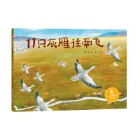 儿童时代图画书:11只灰雁往南飞
