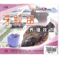 牙鲆鱼养殖技术(一片装)VCD( 货号:1035100139003006)