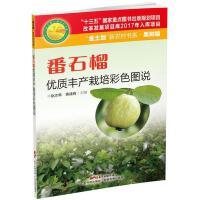 番石榴优质丰产栽培彩色图说 赵志常,黄建峰 主编