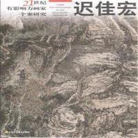 迟佳宏-21世纪有影响力画家个案研究 9787805269023 北京工美
