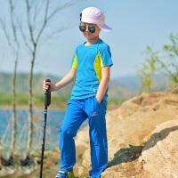 儿童户外运动装女童速干衣套装夏季短袖速干t恤速干衣裤套装透气