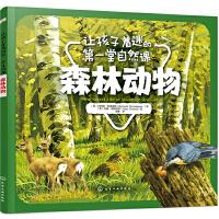 让孩子着迷的第一堂自然课――森林动物
