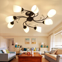 客厅吸顶灯美式客厅灯乡村简约大厅灯欧式田园个性温馨餐厅卧室灯