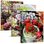 正版 和二木一起玩多肉1+II(上 下)共三册 萌宠多肉植物养花 二木的多肉花园植物花卉养殖 多肉植物图谱花卉 养