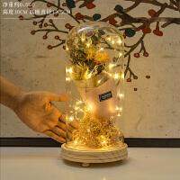 创意家居创意摆件少女心房间生日礼物装饰干花玻璃罩小夜灯卧室