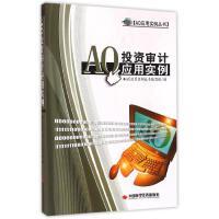 AO投资审计应用实例 中国时代经济出版社
