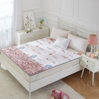 榻榻米床垫可水洗 可折叠1.5米1.8m床双人垫被防滑床护垫薄款床褥
