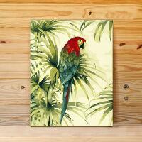 金刚鹦鹉北欧花鸟diy油画自己涂色数字号码区域上色装饰画填充 鹦鹉6032