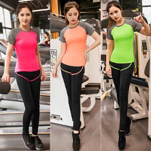 2018新款瑜伽服 运动服 速干服运动套装 大码套装 跑步服