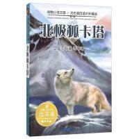 北极狐卡塔