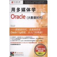 用多媒体学-ORACLE大数据时代