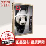 最后的熊猫 上海译文出版社