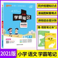 2020新版PASS绿卡图书小学语文知识大全 小学语文学霸笔记一二三四五六年级 全国通用版基础知识手册大集结资料包小升