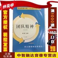 团队精神 殷源(3VCD)用大雁精神训练团队 视频讲座光盘碟片