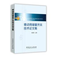 难动用储量开采技术论文集 阎洪涛