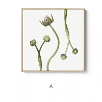 虞美人ins宝丽来摄影美式浪漫花卉绿植图案田园客厅装饰画