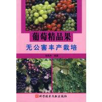 葡萄精品果无公害丰产栽培