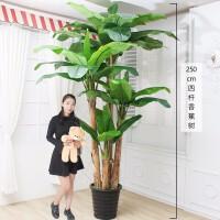 仿真植物盆栽摆设绿植仿真花大盆景塑料树客厅摆件落地假花