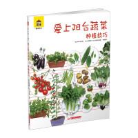 爱上阳台蔬菜・种植技巧