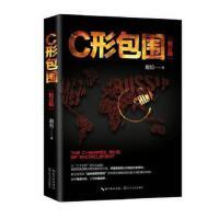 C形包围:内忧外患下的中国突围(新版) 戴旭 长江文艺出版社