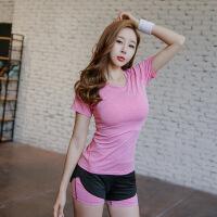 瑜伽服三件套装春夏彩棉透气T恤短裤女运动跑步服彩棉胸衣套装