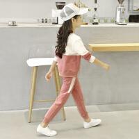 女童套装春秋童装新款运动儿童女孩时尚两件大童