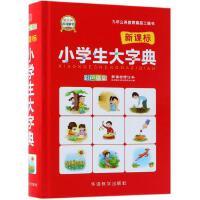 华语教学:小学生大字典