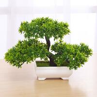 创意仿真绿植摆设家居装饰品书柜酒柜隔板装饰办公室桌面摆件