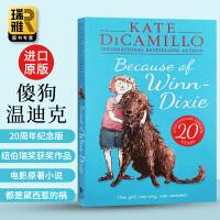 Because of Winn Dixie 傻狗温迪克 英文原版小说 都是黛茜惹的祸 纽伯瑞奖 暑期书单 儿童文学 多亏