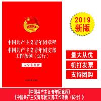 正版 2019新修订二合一 中国共产主义青年团章程 中国共产主义青年团支部工作条例(试行)大字条旨版 合订本 32开
