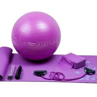 SHUA/舒华 瑜伽套装SH-34004 瑜伽球 瑜伽垫 瑜伽砖 拉力带 拉力管 双向手打气筒
