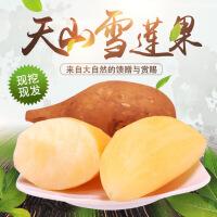【包邮】汉馨堂 天山雪莲果 红泥沙雪莲果新鲜水果10斤装