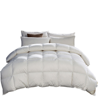 羽绒被加厚冬被春秋被保暖被子被芯单双人床冬季白鸭绒被特价