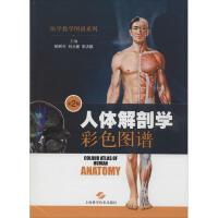 人体解剖学彩色图谱(第2版) 上海科学技术出版社