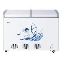 Haier 海尔 BC/BD-220SE(白色) 220升 220L 商用变温 冷柜 超低耗电量,省钱省心 大冷冻力,营养保鲜 全封闭扣胆,防止渗漏