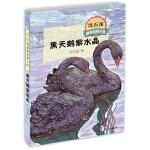 沈石溪激情动物小说黑天鹅紫水晶